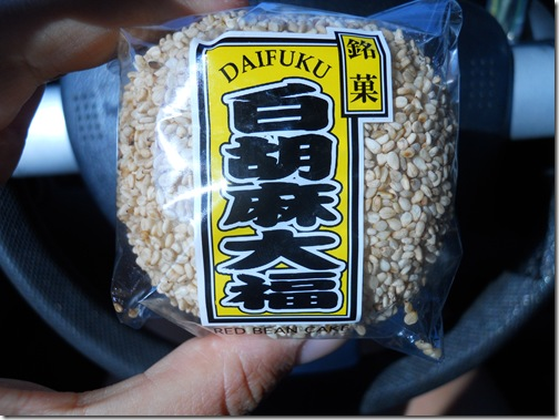Blog Pictures 086