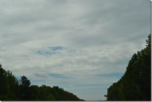Amelia Island - May 2011 002
