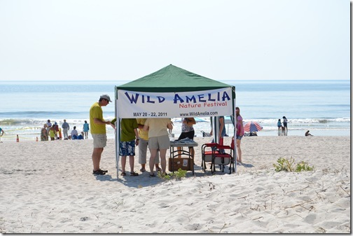 Amelia Island - May 2011 115