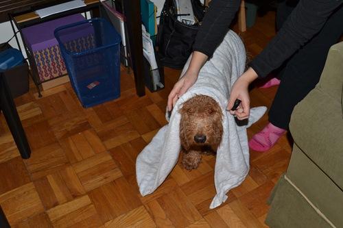 https://apartmentnearchinatown.files.wordpress.com/2011/10/blog-pictures-0092.jpg