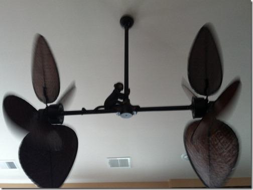 cute fan